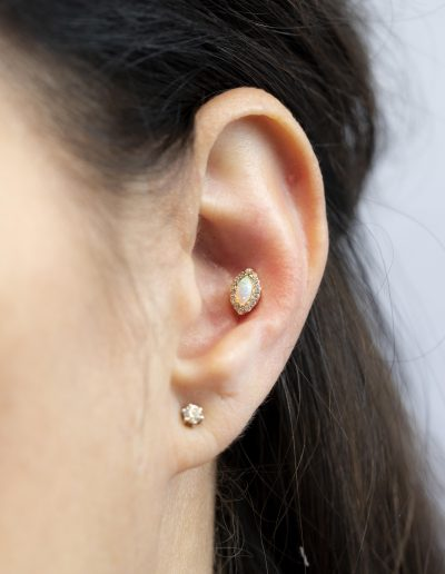 marquise-altura-bvla-piercing